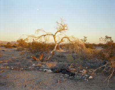 Virginia Beahan, 'Moonrise over Acres for Sale, Slab City', 2015