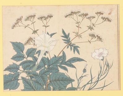 Sakai Hoitsu, 'Autumn Flowers', 1908