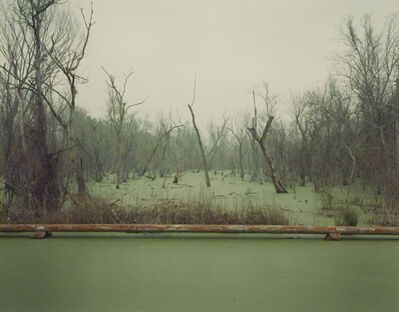 Richard Misrach, 'Swamp and Pipeline, Geismar, Louisiana', 1998