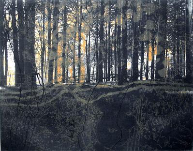Ken Denning, 'Forêt VIII', 2007