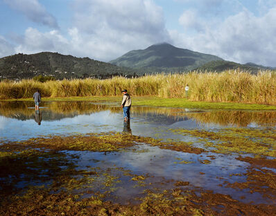 Larry Sultan, 'Corte Madera Marsh: Homeland Portfolio', 2009