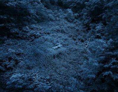 Yojiro Imasaka, 'Illuminating Earth 137- C23 June 7 2020', 2020