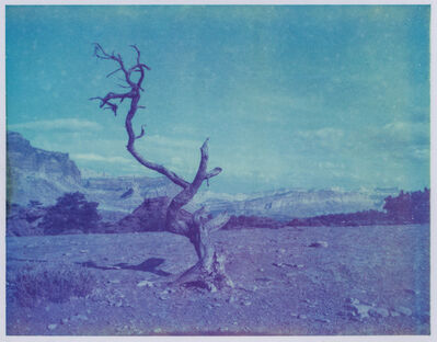 Kirsten Thys van den Audenaerde, 'Deadwood - Contemporary, Polaroid, Landscape, Color, Landmark, Blue', 2017