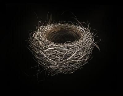 Mitchell Lonas, 'Nest', 2018