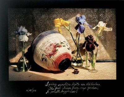 Duane Michals, 'Spring Sunshine', 2006
