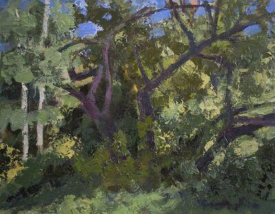 Tony Serio, 'Split Tree', 2020