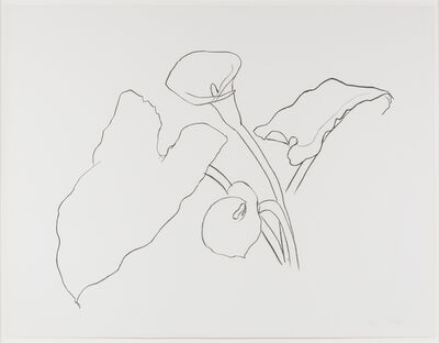 Ellsworth Kelly, 'Calla Lily I, from the Series of Plant and Flower Lithographs', 1983-1985