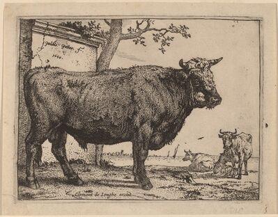 Paulus Potter, 'Bull', 1650