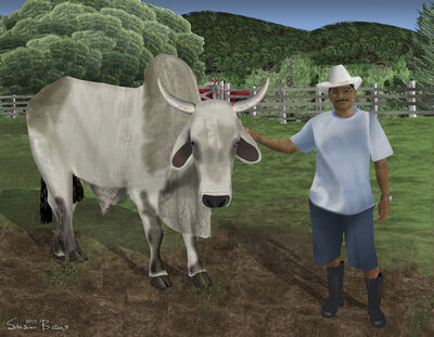 Susan Baus, 'Juan Tabin and His Bull', 2015