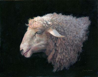 Timothy Barr, 'Sheep Profile', 2015