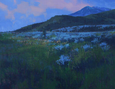 Tom Howard, 'Evening in Spring, Southern Oquirrhs', 2018