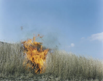 Rinko Kawauchi, 'Untitled, from the series Ametsuchi', 2012