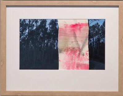 Victor Alba, 'Symbiosis naturae A2', 2016