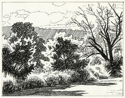 Paula Heisen, 'Blasted Tree', 2020