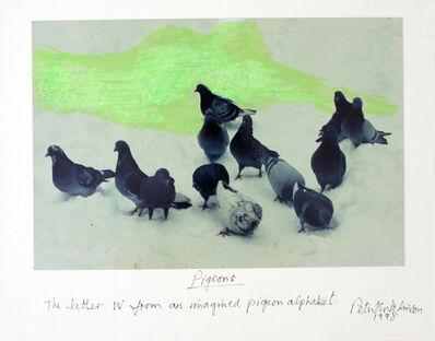 Peter Arthur Hutchinson, 'Pigeons', 1998