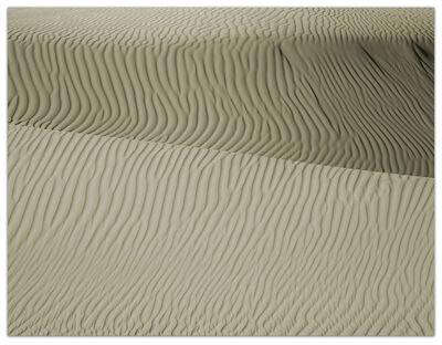 Ray Charles White, 'Dune Study 2', 2014