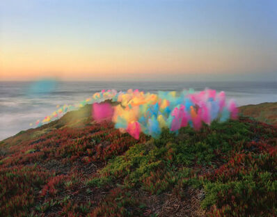 Thomas Jackson, 'Tulle no. 5, Point Reyes National Seashore, California', 2020