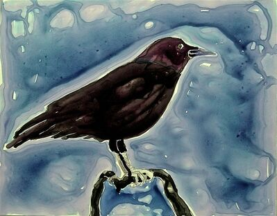 Eleanor Hubbard, 'Wet Crow', 2009
