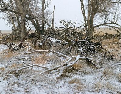 Andrew Moore, 'Buckboard Wagon Remnants, Sheridan County, Neb', 2011
