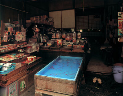 "Yutaka Takanashi, 'Asukasabashi, Torigoe: Cheap Sweet Shop, 1-21-3 Torigoe, Taito-ku, from the series ""Machi""', 1977"