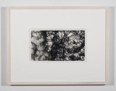 Nene Humphrey, 'Slowspin Frame 02:57', 2017