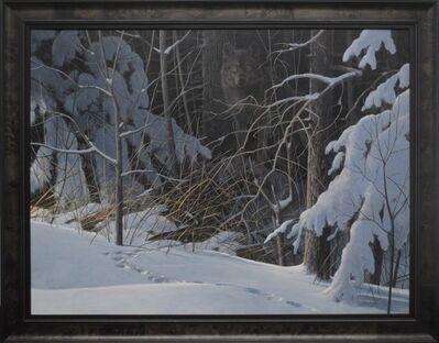 Douglas R. Laird, 'Black Wolf in Winter', 2016