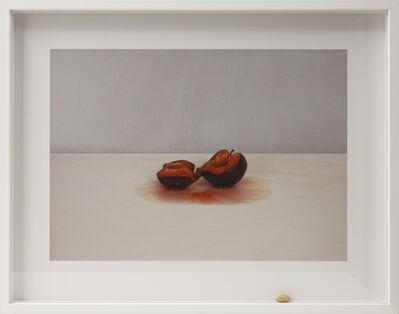 Pablo Lobato, 'Muda (Ameixa, #3)', 2015