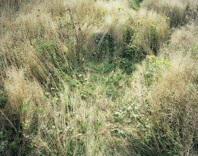 Katherine Wolkoff, 'Deerbeds 07', 2007