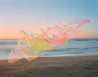 Thomas Jackson (b.1971), ' Tulle no. 18, Point Reyes National Seashore, California', 2020