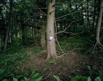 Adam Ekberg, 'A camera in the forest', 2008