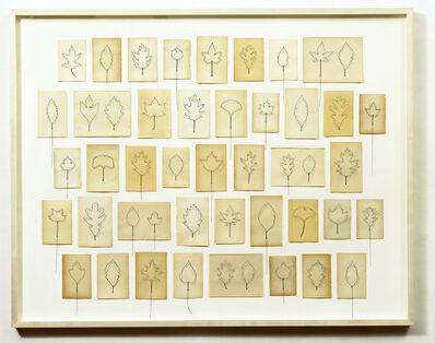 Eric Rhein, 'Fly Leaves-Gathering of 47 ', 1998-2005