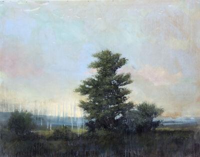 Peter Hoffer, 'Young Cedar', 2016