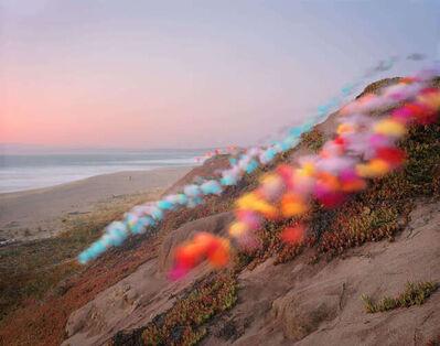 Thomas Jackson, 'Tulle no. 8, Point Reyes National Seashore, California', 2020