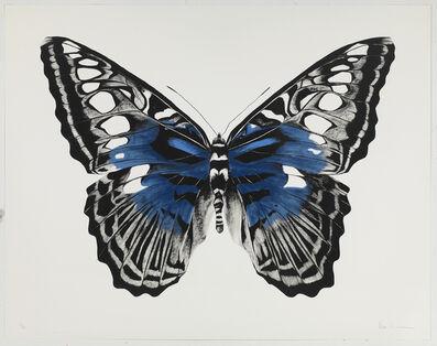 Rose Corcoran, 'Butterfly Blue Silkscreen'