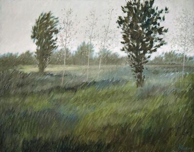 Robert Kipniss, 'Landscape.', 2017
