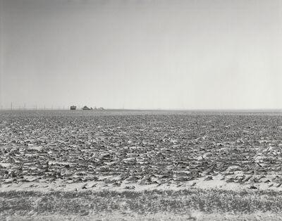 Rhondal McKinney, 'Untitled #3429', 2007