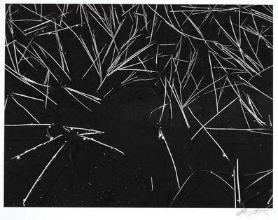 Ansel Adams, 'Grass and Pool, The Sierra Nevada, California', 1935