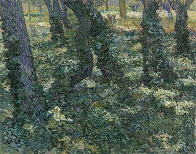 Vincent van Gogh, 'Undergrowth', 1889