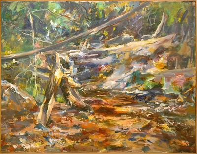 Raoul Middleman, 'Lapidum Falls', 1995
