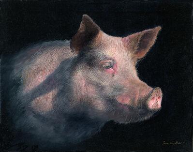 Timothy Barr, 'Pig Profile', 2015