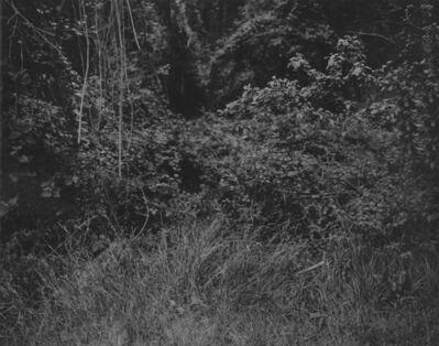 Gilbert Fastenaekens, 'Untitled #020', 1988-1996