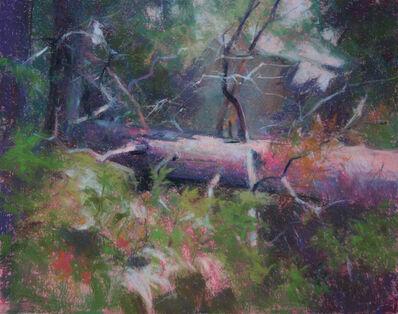 Doug Dawson, 'Fallen Pine', 2019