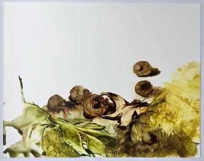 Ilana Manolson, 'Ghal', 2016