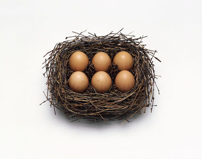 Nancy Fouts, 'Egg Box', 2013