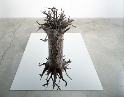 Sam Durant, 'Tangled, Chaotic, Discontinuous, Senseless, Inverted, Rational, Uniform, Structured, Ordered, Reversed', 2001