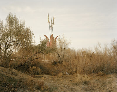 Nadav Kander, 'Priozersk II, (Tulip in Bloom), Kazakhstan', 2011