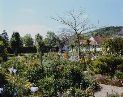 Stephen Shore, 'Rear Garden', 2002