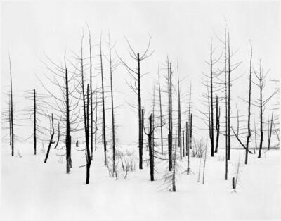 Darren Almond, '69th Parallel 2', 2005