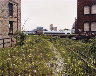 Joel Sternfeld, 'Looking Northwest from 29th Street, June 2000'