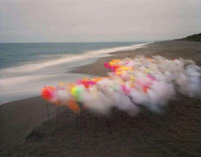Thomas Jackson, 'Tulle no. 14, Point Reyes National Seashore, California', 2020